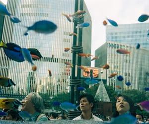 admire, explore, and fish image