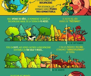 ambiente, ecologia, and pictoline image