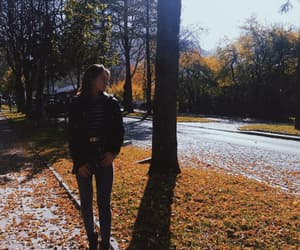 autumn, brown, and fashion image