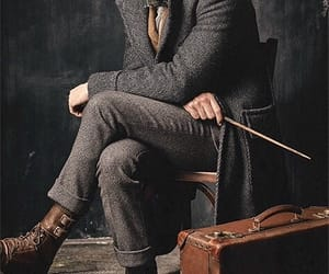 fantastic beasts, newt, and newt scamander image
