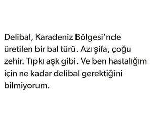 bal, alıntı, and türkçe sözler image