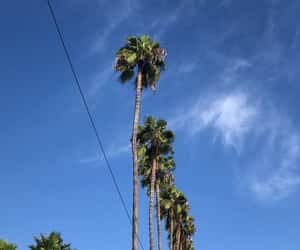 background, blue, and california image