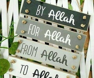 allah, islam, and prayer image