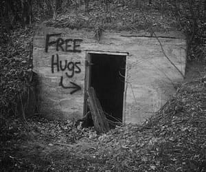 hug, free, and free hugs image