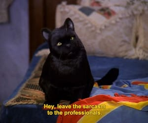 sabrina the teenage witch, salem, and 90s image