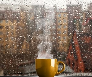 autumn, cup, and rain image