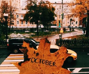 autumn, october, and leaves image