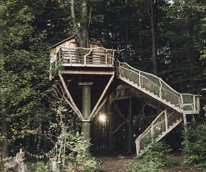 dream house, treehouse, and forest image