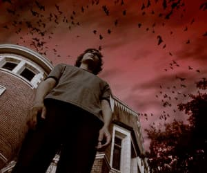 apocalypse, coven, and american horror story image