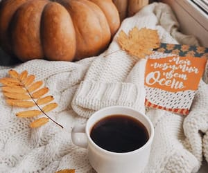 aesthetic, autumn, and brown image