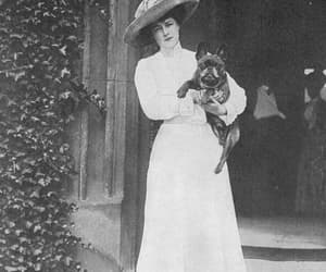 1910s, 1911, and dogs image