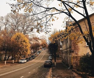 fall, autumn, and street image