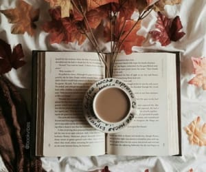 grafika aesthetic, book, and leafs