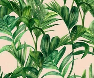background, papeldeparede, and green image