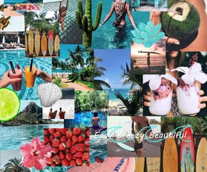 beach, coconut, and Collage image