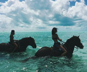 horse, ocean, and summer image