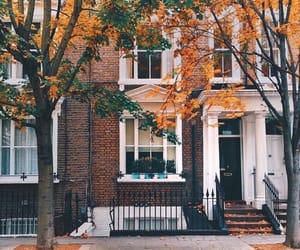 grafika autumn, fall, and leaves