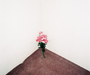 flowers and room image