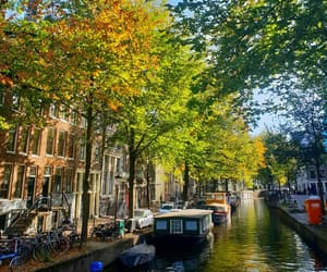 amsterdam, nature, and netherlands image