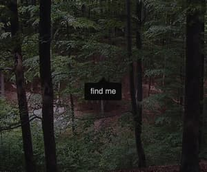 nature, find me, and forest image
