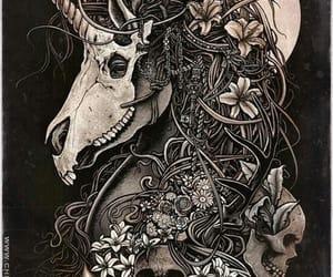 skull, art, and unicorn image