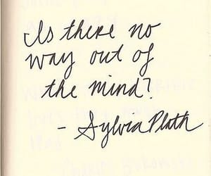 quotes, sylvia plath, and words image