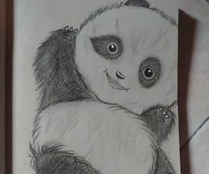animali, disegno, and panda image