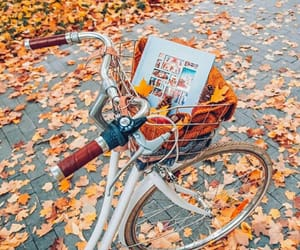 autumn, book, and colors image