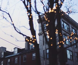 light, indie, and tree image