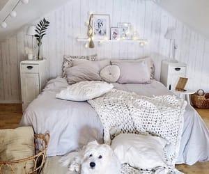 animal, cozy, and decoration image