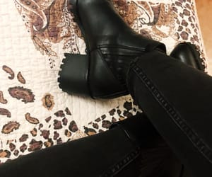 animal, boots, and winter image