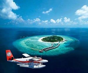 belleza, isla, and volar image