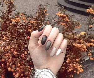 autumn, manicure, and nails image