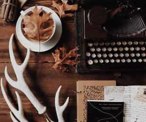 autumn, aesthetic, and coffee image