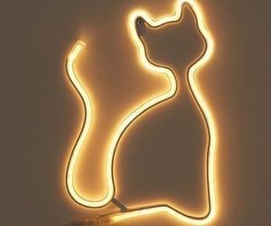 cat, neon, and neon lights image