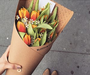 aesthetic, blooming, and bouquet image