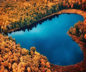 autumn, heart, and canada image