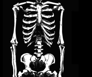 bones, dark, and obscure image