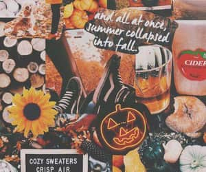 aesthetic, october, and sunflowers image