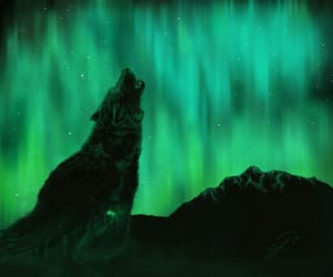 art, wolf, and northern lights image