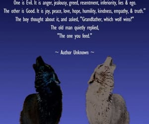 wolves and Cherokee image