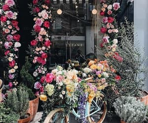 awesome, flowers, and decor image