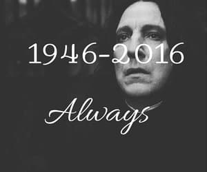 always, alan rickman, and harry potter image