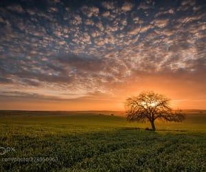 cloud, popular, and sunrise image