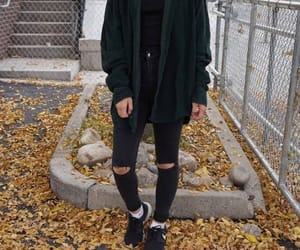 aesthetic, fall, and fashion image