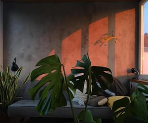 plants, aesthetic, and sunset image