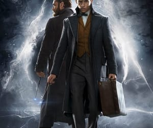 harry potter, fantastic beasts, and albus dumbledore image