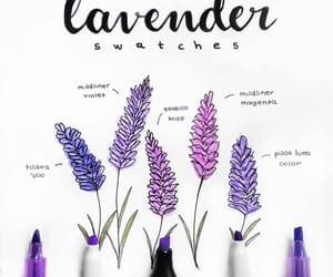 journaling, lavender, and university image