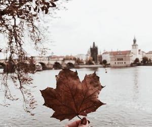 Autumn in Prague 🍁🍂
