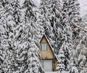 cottage, ski, and house image